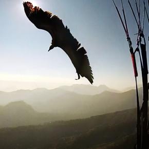 Полеты в Гималаях Flying Log. Часть 2. Путешествие в Восточный Непал.